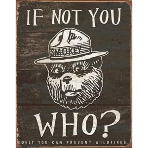 Plechová ceduľa SMOKEY BEAR - If Not You, (31,5 x 40 cm)