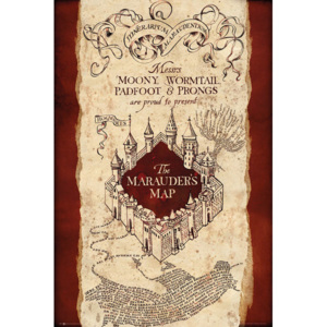 Plagát, Obraz - Harry Potter - Marauder's Map, (61 x 91,5 cm)