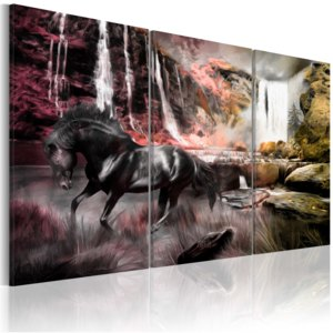 Obraz - Black horse by a waterfall