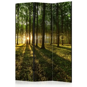 Paraván - Morning in the Forest [Room Dividers] 135x172