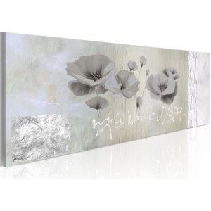 Obraz - Poppies in hibernation 120x40