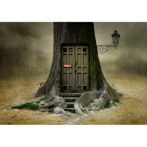 Umelecká fotografia Only OPENS, if you are open for fantasy., Ben Goossens