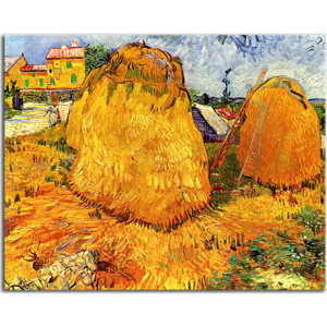 Haystacks in Provence zs18399