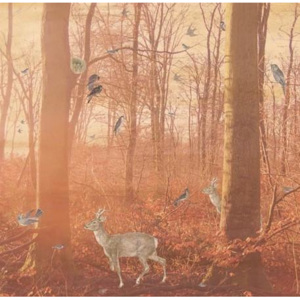 MR.PERSWALL - Creativity & photoart - Magical forest - P011401-6