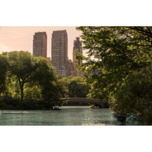 MR.PERSWALL - B- New York Memories - Central Park - E010401-9
