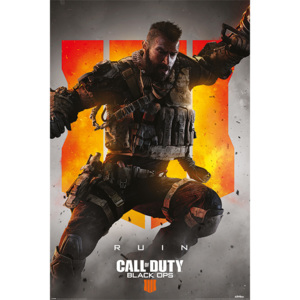 Plagát, Obraz - Call Of Duty – Black Ops 4 Ruin, (61 x 91,5 cm)