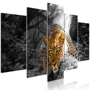Obraz - Leopard Lying (5 Parts) Wide Grey 100x50