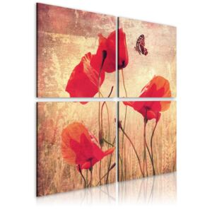 Obraz - Retro style, poppies and butterfly 80x80