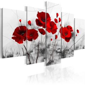 Obraz - Poppies - Red Miracle 100x50