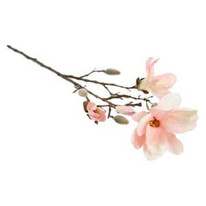 Magnolia Spray Chaica M rosa