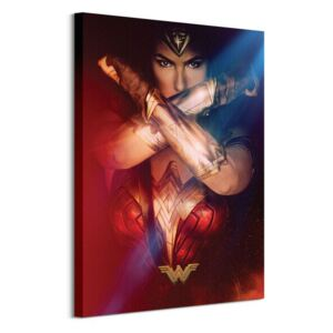 Obraz na plátne DC Comics Wonder Woman (Power) 60x80cm WDC99962