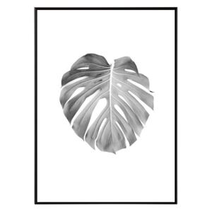 La forma Design studio Monstera 30x40 cm
