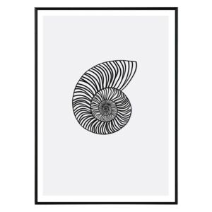 La forma Design studio Nautilus in black 30x40 cm
