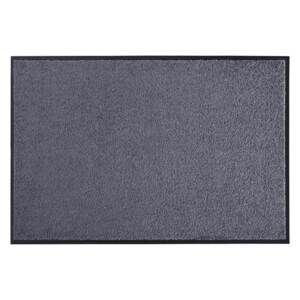 Hanse Home Collection koberce Rohožka Wash & Clean 101464 Grey - 60x90 cm