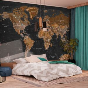 Fototapeta - World: Stylish Map + zadarmo lepidlo - 200x140