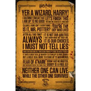 Plagát, Obraz - Harry Potter - Quotes, (61 x 91,5 cm)