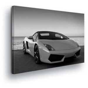 GLIX Obraz na plátne - Black and White Sports Car 2 x 30x80 / 3 x 30x100 cm