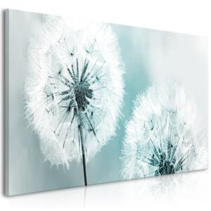 Obraz - Fluffy Dandelions (1 Part) Blue Wide 100x45
