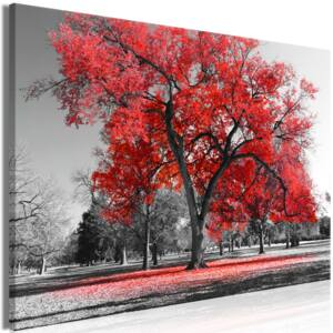 Obraz - Autumn in the Park (1 Part) Wide Red 90x60