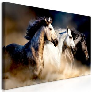 Obraz - Sons of the Wind (1 Part) Wide 120x60