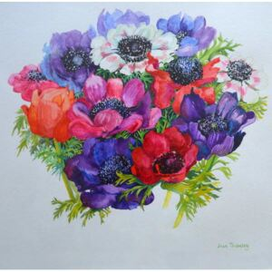 Joan Thewsey - Reprodukcia, Obraz - Anemones: red, white, pink and purple, 2000