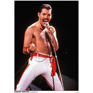 Plagát, Obraz - Queen (Freddie Mercury) - Los Angeles 1982, (59,4 x 84 cm)
