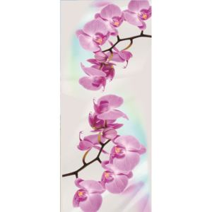 Fototapety na dvere Orchid 2 vlies 91 x 211 cm