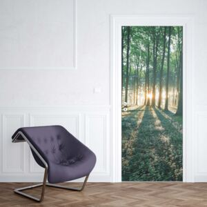 GLIX Fototapeta na dvere - Forest Landscape Green Light