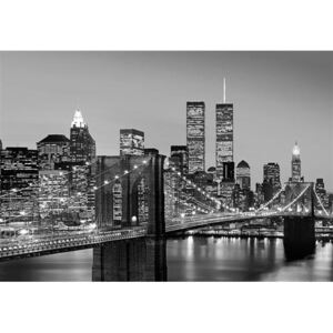 Fototapety, rozmer 366 x 254 cm, Manhattan Skyline at Night, W+G 138