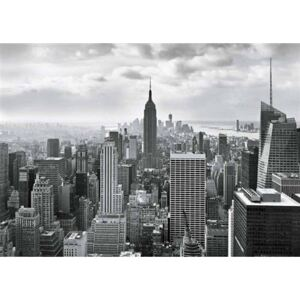 Fototapety, rozmer 368 x 254 cm, New York, Sunny Decor SD323