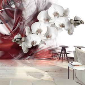 Fototapeta - Orchid in red 200x140