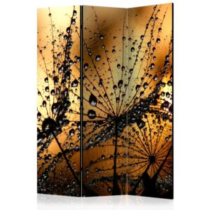 Paraván - Dandelions in the Rain [Room Dividers] 135x172