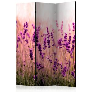 Paraván - Lavender in the Rain [Room Dividers] 135x172