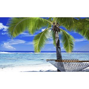 Fototapeta Beach palms and hammock vlies 104 x 70,5 cm