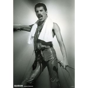 Plagát, Obraz - Queen (Freddie Mercury) - Live On Stage, (59,4 x 84 cm)