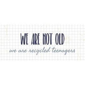 Plechová ceduľa We are not old (kód AHOJLETO19 na -20 %)