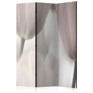 Paraván - Tulips fine art - black and white [Room Dividers] 135x172