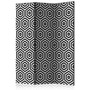Paraván - Black and White Hypnosis [Room Dividers] 135x172