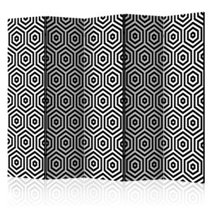 Paraván - Black and White Hypnosis [Room Dividers] 225x172