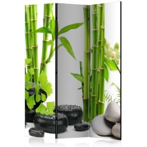 Paraván - Bamboos and Stones [Room Dividers] 135x172