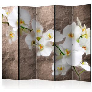 Paraván - Impeccability of the Orchid II [Room Dividers] 225x172 7-10 dní